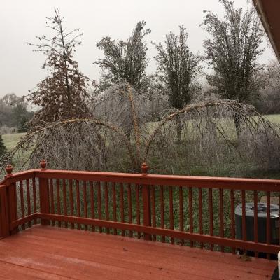 Ice Storm 01 11_15_18