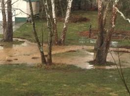 Flood 031902