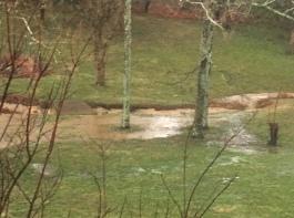 Flood 031903